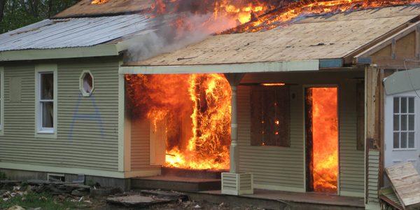eliminare formiche con il fuoco